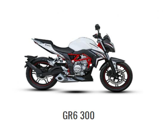 Guerrero GR6 300