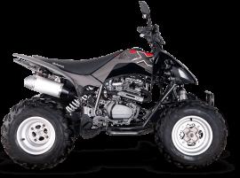 Motomel MX 250 Base
